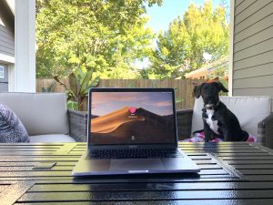 An open Macbook on a patio table, with a puppy on the seat behind it